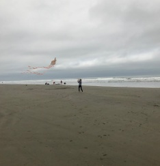 Kite_Flying_2