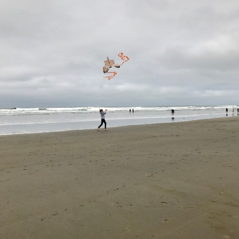 Kite_Flying_3